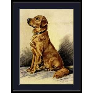 Picture Print Golden Retriever Puppy Dog Art Everything