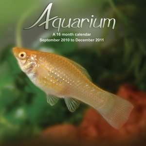 2011 Animal Calendars Aquarium   16 Month   30x30cm