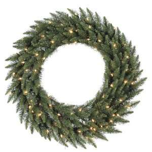 LED Lighted Camdon Fir Artificial Christmas Wreath   Warm White Lights